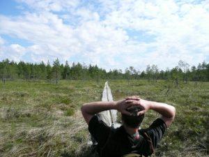 Rast auf den Brettern - Karelien - Finland